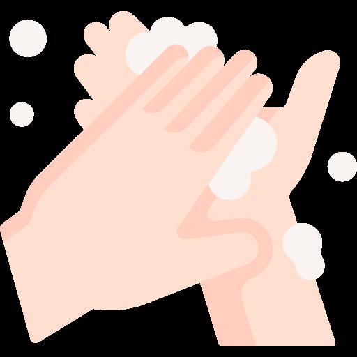 mani igienizzate